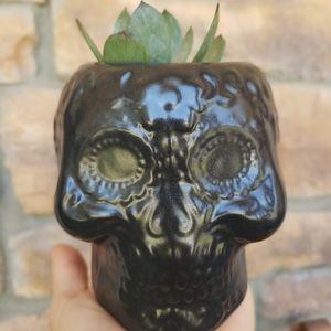 Black Skull planter/pot